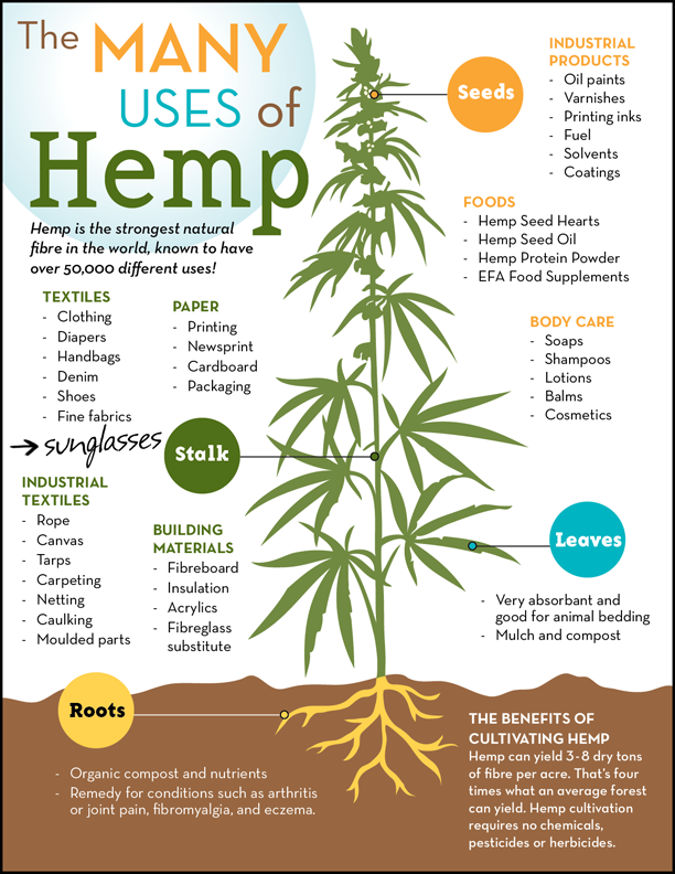 Shop Online Canadian Produced Hemp Products from Canadian Farmers