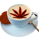 Hemp-Coffee-Locations-Thunder-Bay